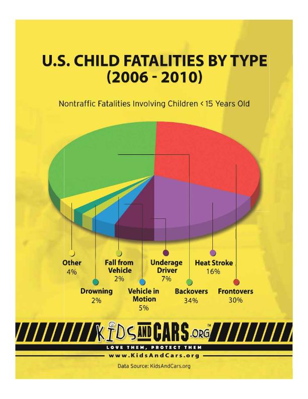 fatalities-pie-chart
